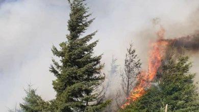 """Photo of Fuego en El Bolsón: """"Vamos a pedir la pena máxima"""", dijo Carreras"""
